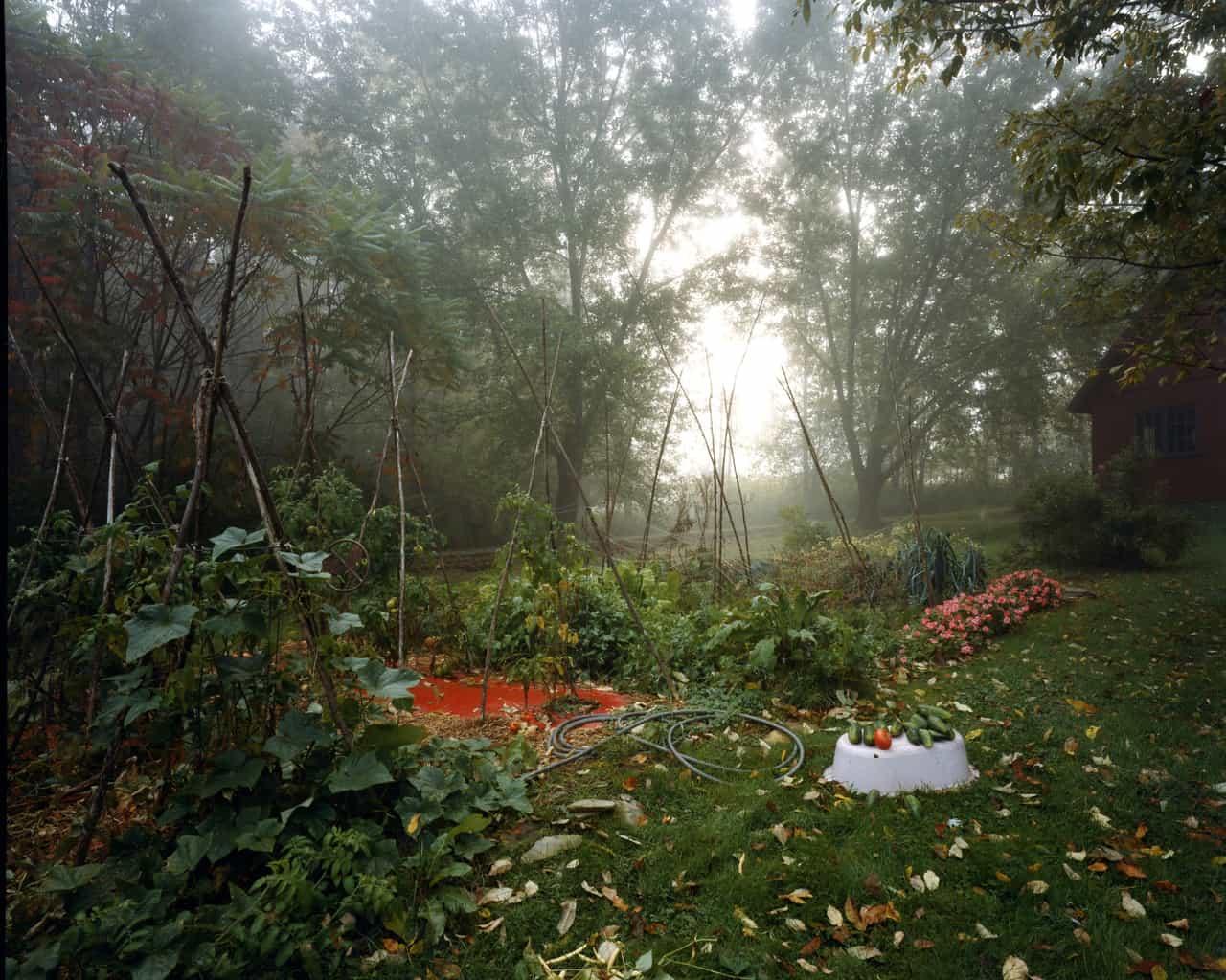 Fall Garden, Lyme, NH, 2005